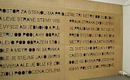 PIN A MEDAL ON THAT BOY (The Jindřich Chalupecký Prize)
