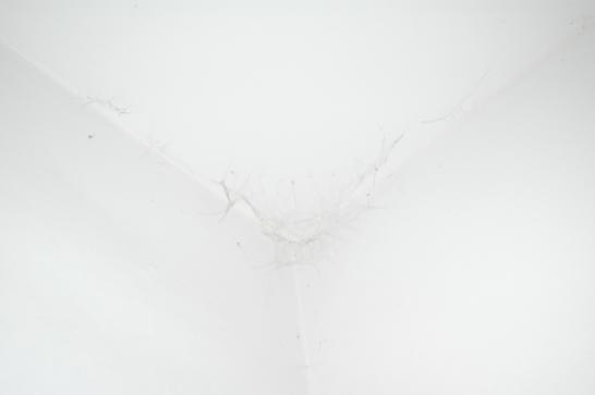 Antonio Negri  v porcelánové dílne