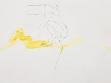 Matthew Barney, Drawing restraint 8: Natal cleft, 2003, kresba (detail)