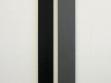 Vasil Artamonov, 13 metrů k absolutnímu prvenství (Ostankinská tv věž Moskva 21 x 187cm, CN tower Toronto 23 x 191,5 cm), sprej na plátně, 2004
