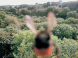 Bee Adventure, 2003,  photographs of bee taken on posthumous tour of the south of England