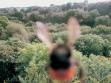 Dobrodružství včely, fotografie včely na posmrtné cestě po jihu Anglie, 2003