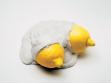 Lemons, 2008. Foto: Tomáš Souček