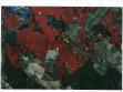 Martin Kačmar, Jiří Sádlo, Vizualizace lesnických map