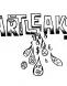 ArtLeaks